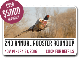 2nd Annual Rooster Roundup