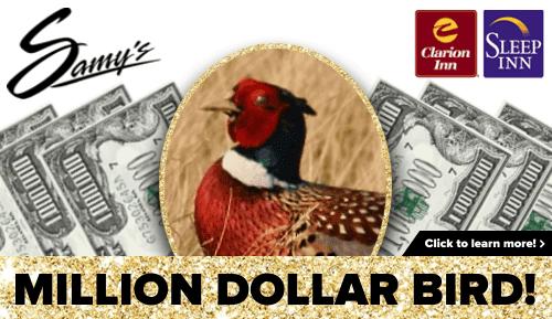 Samy's Million Dollar Bird